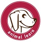 Animal Learn - Allevamento falabella