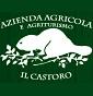 Az.agr. il Castoro