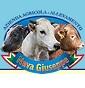 Azienda agricola allevamento Nava Giuseppe