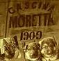 """Allevamento """"da Cascina Moretta - da C.M"""". - Allevamento pastore-tedesco"""