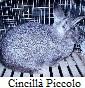 Petrucci Danilo