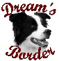 Dream's Border - Allevamento border-collie