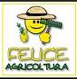 Felice Agricoltura - Allevamento orpington