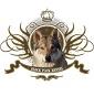 Glock Pack Kennel - Allevamento cane-lupo-cecoslovacco