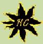 Haflinger del Conte