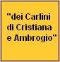 """""""dei carlini di Cristiana e Ambrogio"""""""
