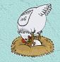 il pollaio di Gino - Allevamento orpington