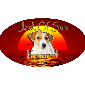 Jack Of Sun Kennel - Allevamento jack-russell-terrier