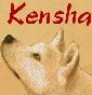 Kumatani Kensha - Akita Inu della Valle dell'Orso