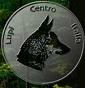 lupicentroitalia - Allevamento cane-lupo-cecoslovacco