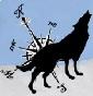 Lupi del Nord - Allevamento cane-lupo-cecoslovacco
