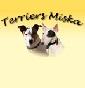 Terriers Miska