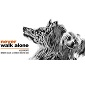 Never Walk Alone - Allevamento border-collie