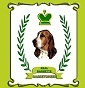Real Baghette - Allevamento bassethound