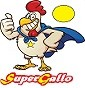 Super Gallo - Allevamento livorno
