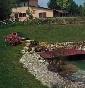 Centro Cinofilo Villa Selen - Allevamento pastore-tedesco